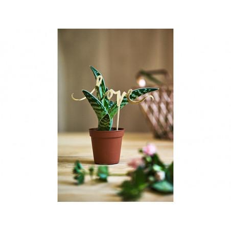 Okulary Żaluzje, czarny